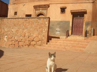 モロッコの田舎町。モロッコに長期・中期滞在してみたい方へ Mika