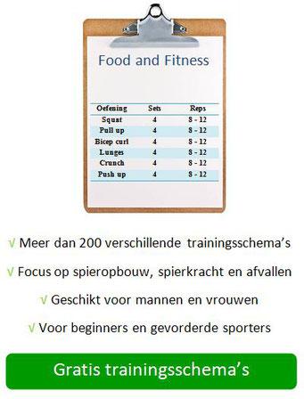 Gratis trainingsschema's afvallen spiermassa spierkracht
