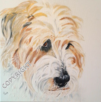 Hundeporträt, Acryl auf Leinwand, 70x70 cm