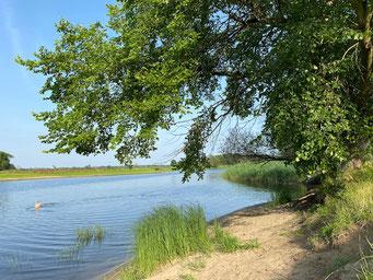 Kienitz Badestelle am Uferloos