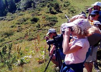 balade sur les traces des marmottes en pleine montagne 1/2 journée enfants famille haute ariège babeth