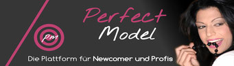 Partneragentur PerfectModel