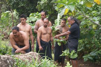 Master der Pflanzenmedizin, spiritueller Heiler, Practioner - Kahu Naone im ganzen Pazifik bekannt.