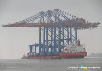 ZPMC Spezialschiff ZHEN HUA 27 mit 3 Containerbrücken für die HHLA Bild 3