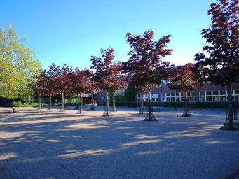 Gebäude C: Klassen 7 und 8