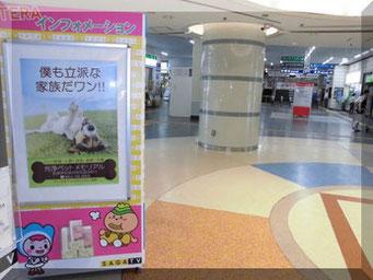 佐賀駅掲示 光浄ペットメモリアルのポスター