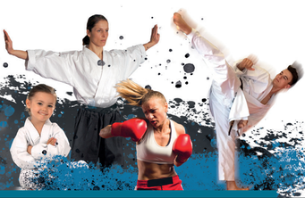 Online Training Karate, Kickboxen