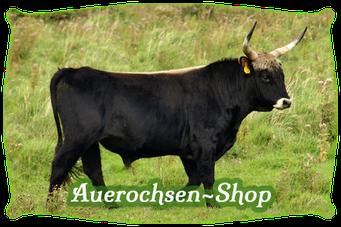 Mein BioRind | Auerochsen-Shop