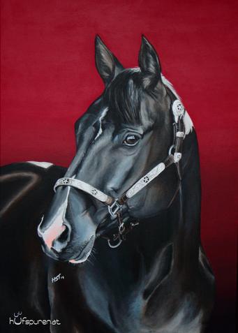 Paint Horse, Westernpferd, Gemälde, Pferde, zeichen, malen,