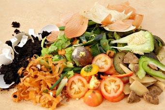 organic waste recicle Mater-Bi