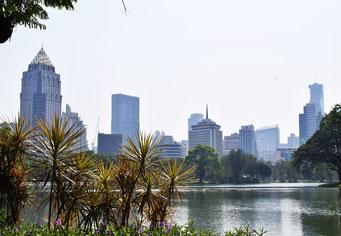 市内のルンピニー公園から望む高層ビル群