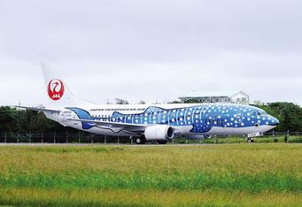 石垣空港に初飛来したジンベエザメジェット