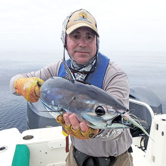 Fly caught skipjack tuna