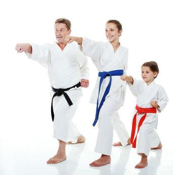 Kinder in Rheine, Familien in Rheine, Taekwondo, Karate, Kinderkarate, Familiensport, Aktivitäten in Rheine, Selbstverteidigung, Selbstverteidigung in Rheine, Fitness, Fitness in Rheine