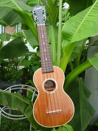 """Nagomu guitar""""Teluha誕生記念Ukulele"""""""