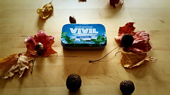 Survival Kit, Everydaycarry, EDC