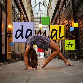 Stage intensite de Yoga chez Damalis à Pau