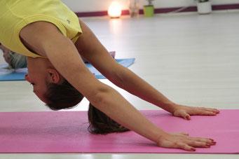 Vinyasa Power Yoga lässt sich an jedes Fitness-Level anpassen. Foto©Pixabay/photodeinym