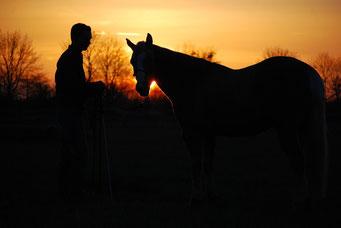 Sonnenuntergang Foto BeeGee und Sebastian Nolewajka
