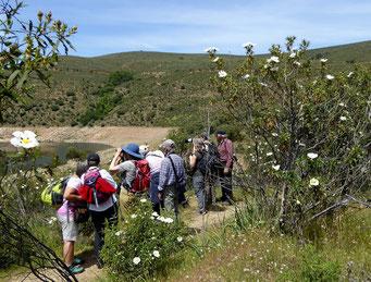 Beobachtungen im Nationalpark Monfragüe