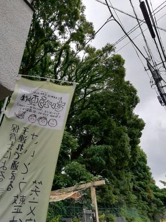 東京都品川区旗の台、子連れで通える、さいとう整体、東急大井町線荏原町駅すぐ