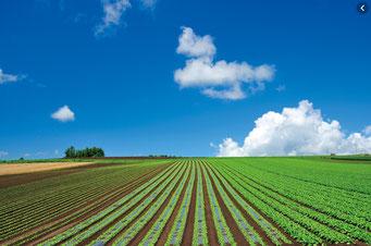 北海道の農地