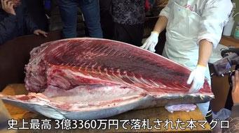 豊洲市場の初セリ マグロ1本が3億3360万円