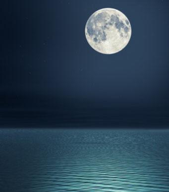 スリランカの満月?