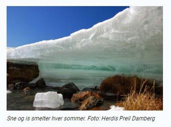 デンマーク気象庁のWebサイトにリンク