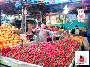 Bild, Youtourshurghada.jimdo.com