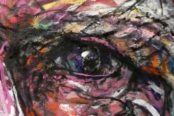 Bruce Pascoe's left eye