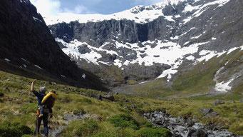 montagne Nouvelle-Zélande Lavande Sauvage