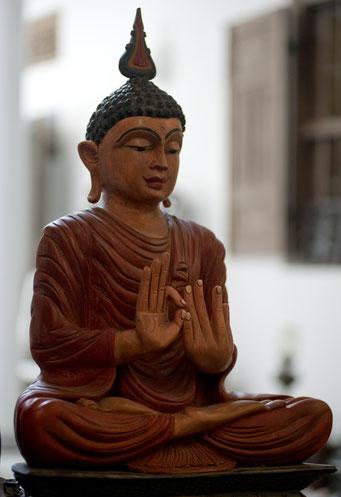 Meditation, Mudra, Buddha