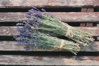 Lavendel gegen Spinnen Basteltipp; Geschenkideen Mädchen Teenager