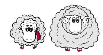 Grace O`Sheep und das Merinowollschaf
