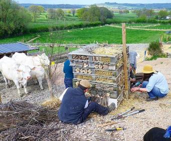 Construction d'un hôtel à insectes lors d'un stage en permaculture