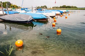 Bootshafen Paradis