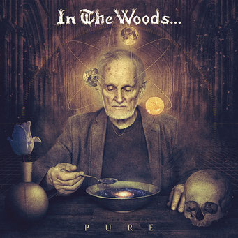 """IN THE WOODS - """"Pure"""""""