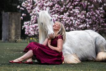 Blütenshooting liegendes Pferd