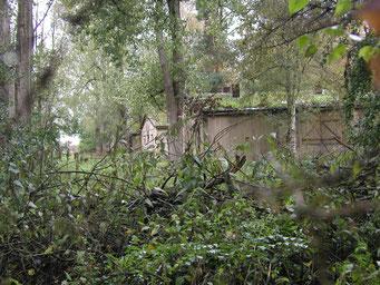 Ansicht der vollständig eingegrünten Holzbaracken. Foto: Andreas Ehresmann, 23.9.2004
