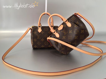 Louis Vuitton Monogram Canvas Nano Speedy & Nano Turenne