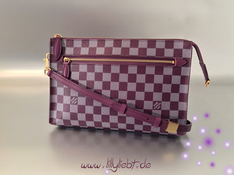 Louis Vuitton Damier Couleurs Modul in Quetsche