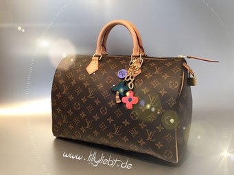 Louis Vuitton Monogram Canvas Speedy 40, Louis Vuitton Ailleurs City Taschenschmuck