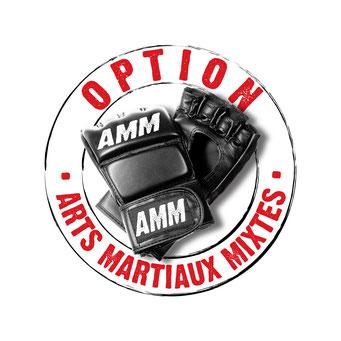 Option arts martiaux mixtes