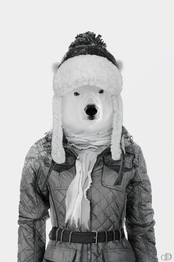 Humanimal Polar Bear