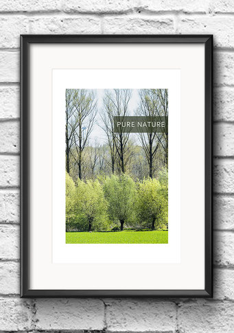 Poster Frühling Bäume grün