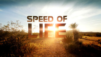 Speed of life (1 ép.) / Discovery