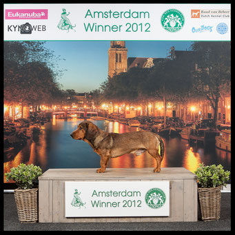 Jeugdwinner en Winner - Amsterdam Winnershow 2012
