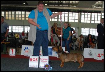 European Winner - European Dogshow Brussels 2016