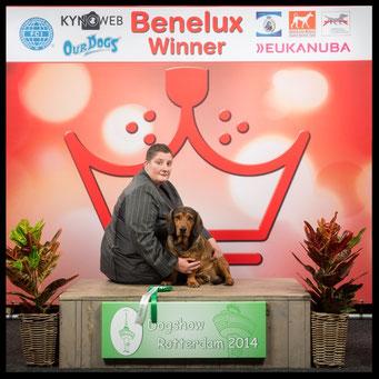 BOB en Benelux Winner - Dogshow Rotterdam 2014